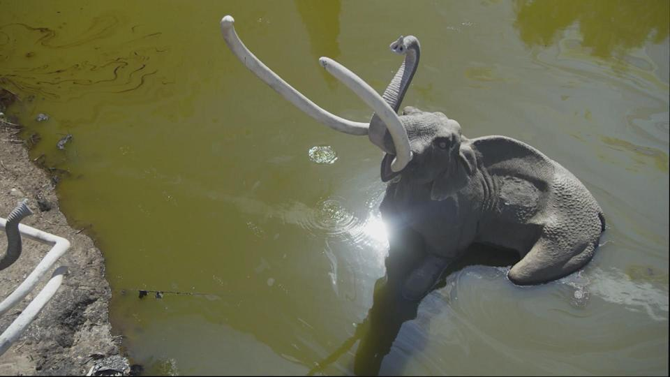VFX were added to the La Brea Tar Pits (Before) - Credit: NBC