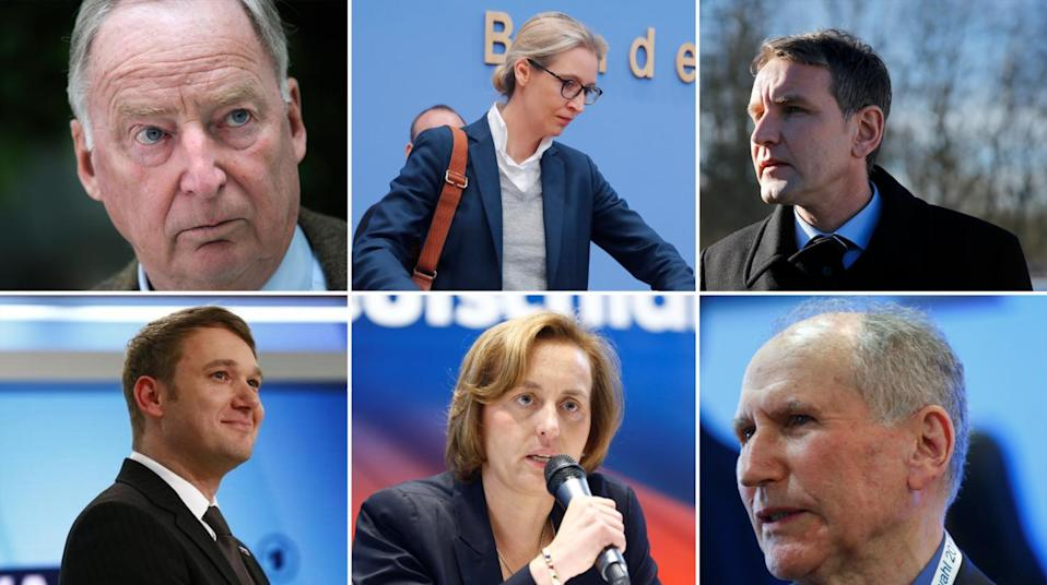 AfD prominent members