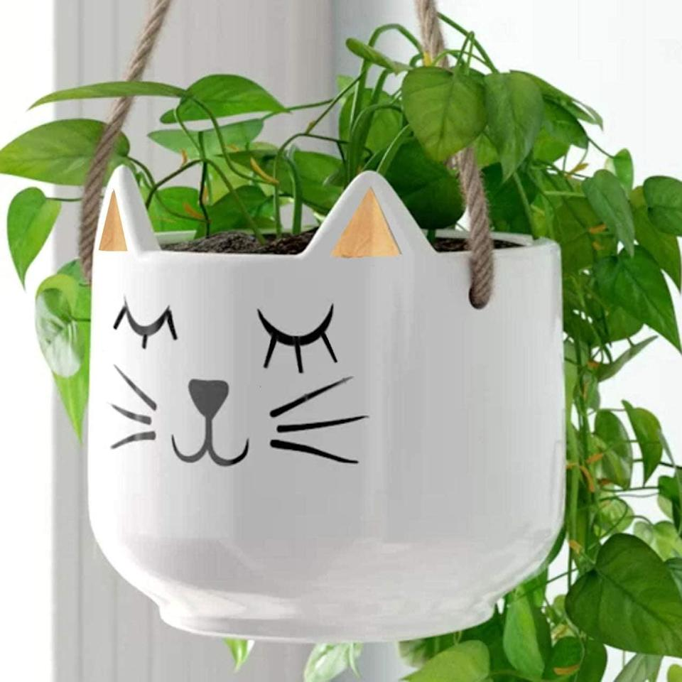 <p>How adorable is this <span>White Cat with Gold Ears Hanging Planter</span> ($25)!? All the cool cats and kittens are vying for this.</p>