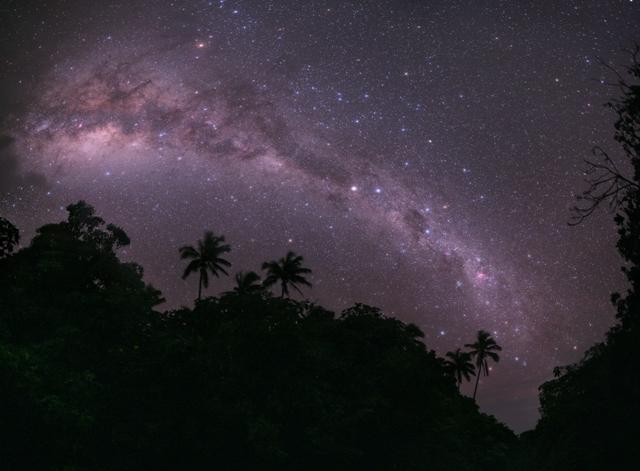 Winner (Earth & Space) 'Galactic Paradise' by Tunç Tezel (Turkey). The southern Milky Way viewed over the hilltops lined with palm trees just outside the village of Oneroa on the coast of Mangaia in the Cook Islands, 11 July 2010. The Milky Way galaxy contains hundreds of billions of stars in a disc-like structure and this Southern Hemisphere view highlights dark clouds of dust that aboriginal Australian astronomers called the 'Emu in the sky'. The panorama was made using nine 30 second exposures and the humidity and moisture created the diffusion and colour effects on the stars.