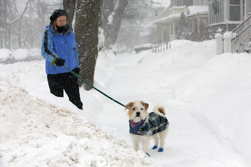 Woman and dog walk in the snow during a winter storm in Buffalo, New York