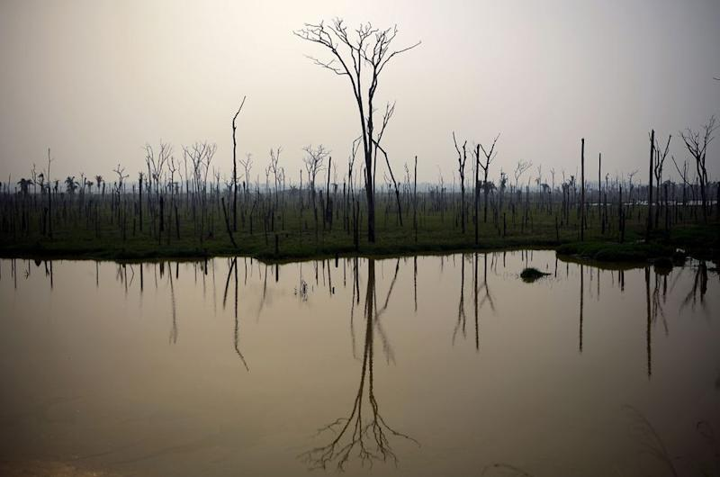 View of burnt areas of the Amazon rainforest, near Abuna, Rondonia state, Brazil, on August 24, 2019.