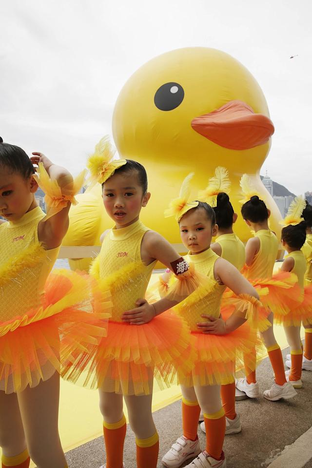 "HONG KONG - MAY 02: Dutch conceptual artist, Florentijin Hofman's Floating duck sculpture called ""Spreading Joy Around the World"" is given a warm welcome by young children from SDM Jazz and Ballet Academie, as it is moved to the South Side of Ocean Terminal, Victoria Harbour on May 2, 2013 in Hong Kong. The ""Rubber Duck"", which is 16.5 meters high, will be in Hong Kong from May 2 to June 9. Since 2007, ""Rubber Duck"" has been traveling to 10 countries and 12 cities. (Photo by Jessica Hromas/Getty Images)"