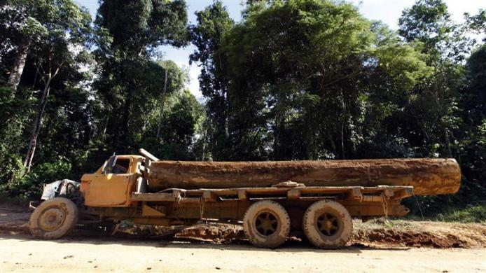 Illegally logged trees are stored on a truck which was abandoned on the side of the Trans-Amazonian highway near the village of Areias in Trairao, in the state of Para May 27, 2012.