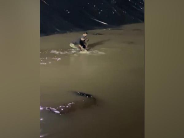 The crocodile being rescued (Photo/ANI)