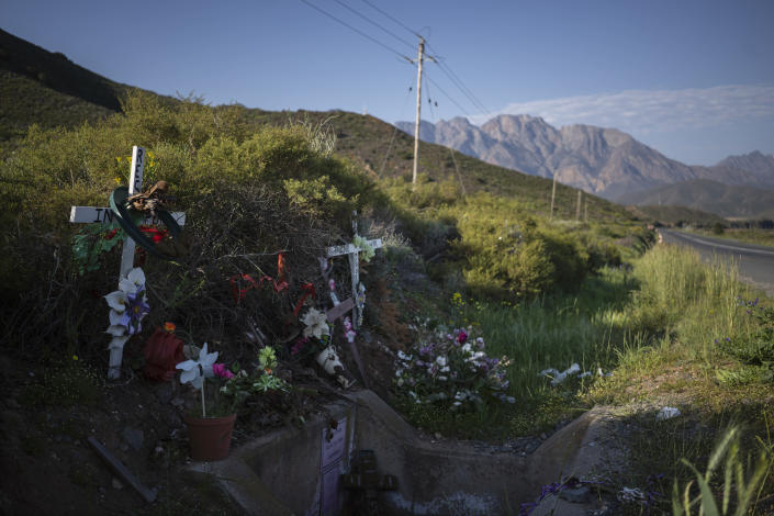 Flowers and crosses mark the place where the body of 8-year-old Tazne van Wyk was found in February next to a highway in Worcester, South Africa, more than 100 kilometers (60 miles) from her home, on Sept. 12, 2020. The girl was raped and murdered after she was abducted next to her home. (AP Photo/Bram Janssen)