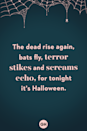 <p>The dead rise again, bats fly, terror strikes and screams echo, for tonight it's Halloween.</p>