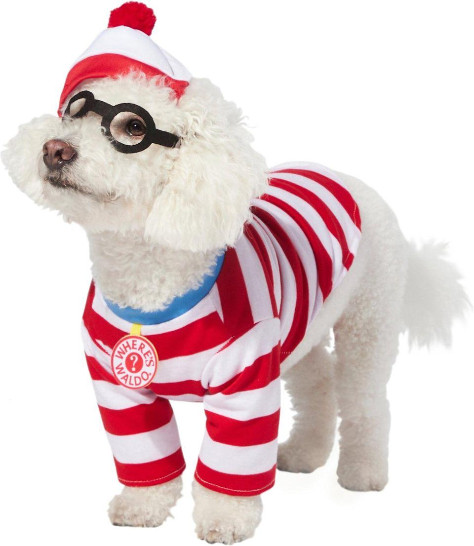 """<p><strong>Rubie's Costume Company</strong></p><p>chewy.com</p><p><strong>$20.99</strong></p><p><a href=""""https://go.redirectingat.com?id=74968X1596630&url=https%3A%2F%2Fwww.chewy.com%2Frubies-costume-company-wheres-waldo%2Fdp%2F251174&sref=https%3A%2F%2Fwww.oprahdaily.com%2Flife%2Fg28714689%2Ffunny-dog-halloween-costumes%2F"""" rel=""""nofollow noopener"""" target=""""_blank"""" data-ylk=""""slk:Shop Now"""" class=""""link rapid-noclick-resp"""">Shop Now</a></p><p>This is the perfect excuse to take your pooch to a Halloween costume party or the dog park and play """"Where's Waldo?""""</p>"""