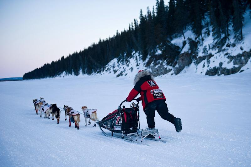 Aliy Zirkle leaves White Mountain, Alaska, in second place during the Iditarod Trail Sled Dog Race on Tuesday, March 13, 2012.(AP Photo/Anchorage Daily News, Marc Lester)