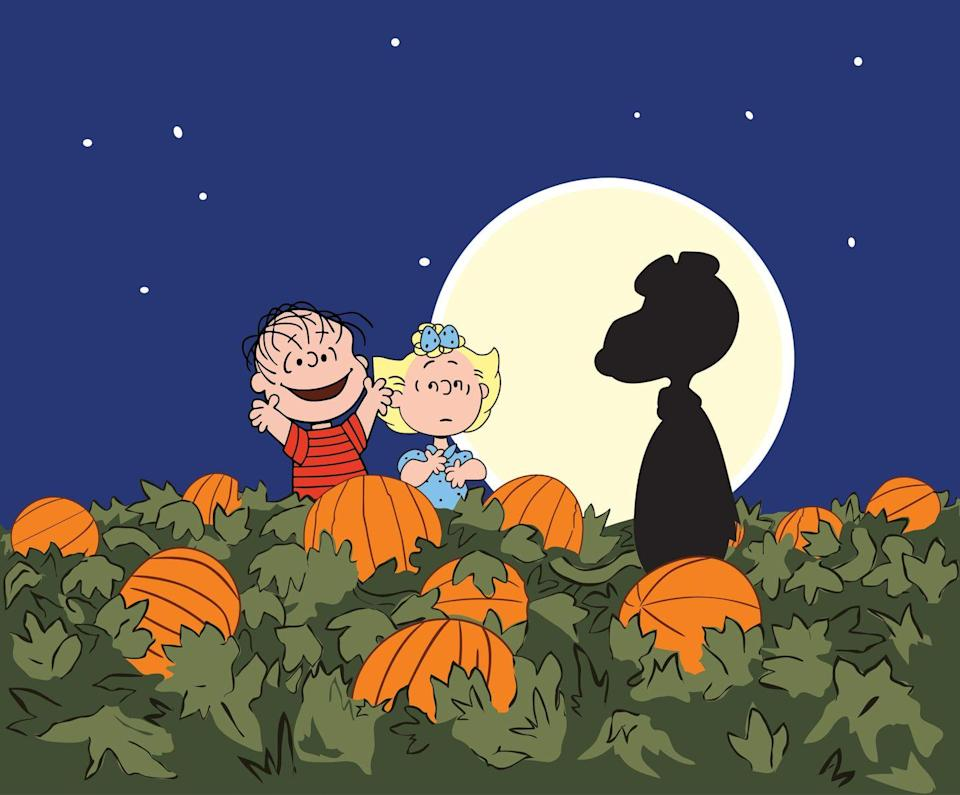 """<p>While the rest of the Peanuts gang are busy with costumes and trick-or-treating and Halloween parties, Linus dedicates his night to what he sees as the true spirit of Halloween: waiting for the arrival of the Great Pumpkin in their pumpkin patch. For those who've seen it dozens of times, and those who've never watched, this iconic special is a joy for all. The best part: <a href=""""https://www.townandcountrymag.com/leisure/arts-and-culture/a12825905/great-pumpkin-charlie-brown-air-date/"""" rel=""""nofollow noopener"""" target=""""_blank"""" data-ylk=""""slk:the special airs"""" class=""""link rapid-noclick-resp"""">the special airs</a> every year just before Halloween, so it's the perfect time to gather the family and start a Halloween tradition. </p><p><a class=""""link rapid-noclick-resp"""" href=""""https://www.amazon.com/Great-Pumpkin-Charlie-Remastered-Deluxe/dp/B0019KAQEU/?tag=syn-yahoo-20&ascsubtag=%5Bartid%7C10063.g.34171638%5Bsrc%7Cyahoo-us"""" rel=""""nofollow noopener"""" target=""""_blank"""" data-ylk=""""slk:Buy now"""">Buy now</a></p>"""