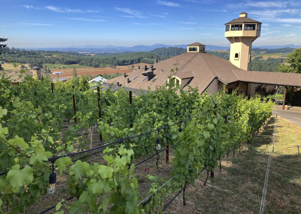 Willamette Valley Vineyards tasting rooms are seen amid the vineyards in Turner, Ore. on Friday, July 9, 2021, with the mountains of the Coast Range beyond. Last year was the winery's first experience in the Willamette Valley with wildfires and smoke impact and this year the vineyards were subjected to record heat. (AP Photo/Andrew Selsky)