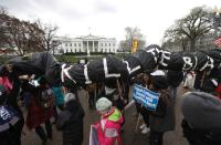 FILE PHOTO: Indigenous leaders participate in protest march and rally outside White House in Washington