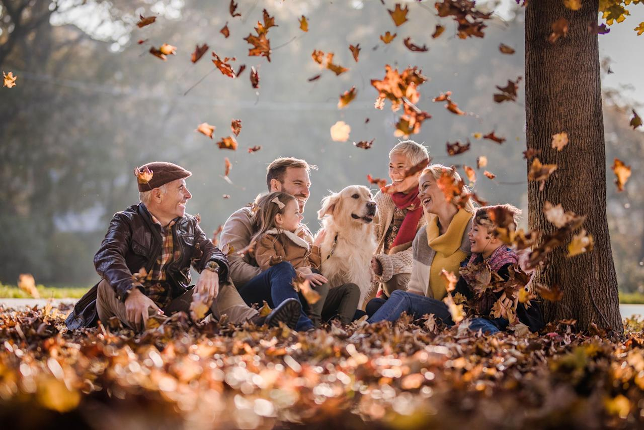 """<p>When the weather finally starts to cool down and the leaves start to change colors, that means you've made it to the <a href=""""https://www.womansday.com/food-recipes/g1926/fall-desserts/"""">best season of the year</a>. No, not because it's stunning and <a href=""""https://www.womansday.com/halloween/"""">Halloween — the best holiday ever</a> — happens in the middle of it, although all of that <em>is </em>true<em></em>. What makes autumn so spectacular is the endless amount of cozy fall activities you can do together with your family for little to no money. </p><p>Whether you want to cuddle up inside with a cup of warm apple cider and watch one of <a href=""""https://www.womansday.com/life/entertainment/a28034748/freeform-halloween-2019/"""" target=""""_blank"""">the best Halloween movies of all time on Freeform</a> (yes, that'd be <em>Hocus Pocus</em>) or take <a href=""""https://www.womansday.com/life/a24667995/scenic-fall-drives/"""" target=""""_blank"""">a long scenic drive</a> to admire all the breathtaking autumnal foliage, there is no shortage of fall activities for families to enjoy together. It's never too soon to start adding items to your fall bucket list — especially because, as July comes to a close, only one more blisteringly hot month stands between you and cozy flannel button-downs, fresh apple pie, and jaunty hayrides preferably driven by a person who's well-versed in spooky ghost stories.</p>"""