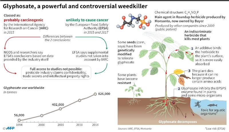 The weedkiller glyphosate (AFP Photo/Alain BOMMENEL, Laurence SAUBADU, Kun TIAN)