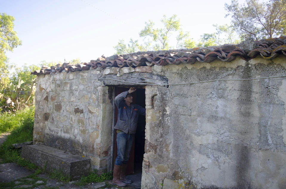 Cain Burdeau examines the stonework of a former barn in Castelbuono, Sicily, on April 13, 2021, that he plans to convert into a family home. (AP Photo/Audrey Rodeman)