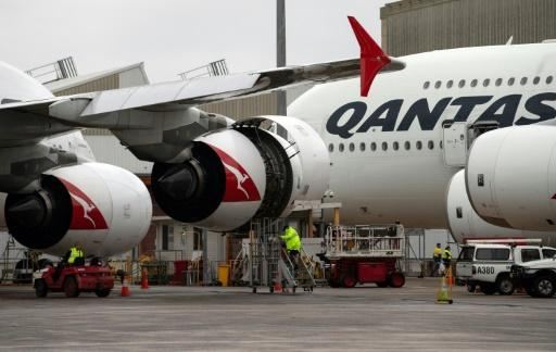 Business Qantas cuts almost quarter of flights