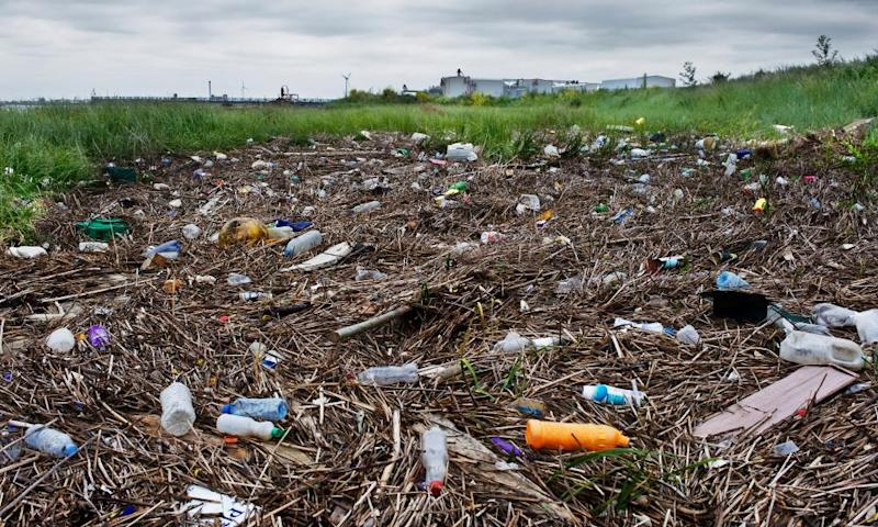 Plastic bottles dominate the litter washed up on the foreshore of the Thames at Rainham on the outskirts of east London.