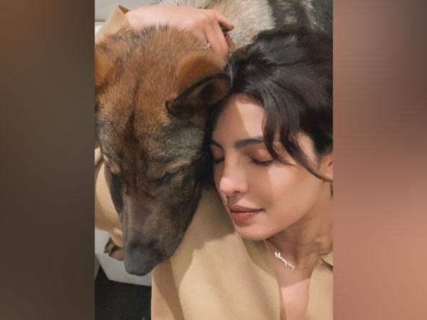 Priyanka Chopra with her dog Gino (Image source: Instagram)