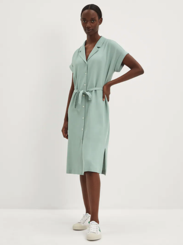 The Camp Collar Dress. Image via Frank And Oak.