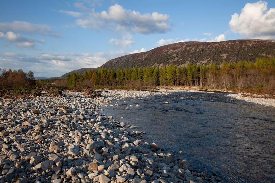 The River Feshie running through Glenfeshie in the Cairngorms National Park, Scotland (Alamy/PA)
