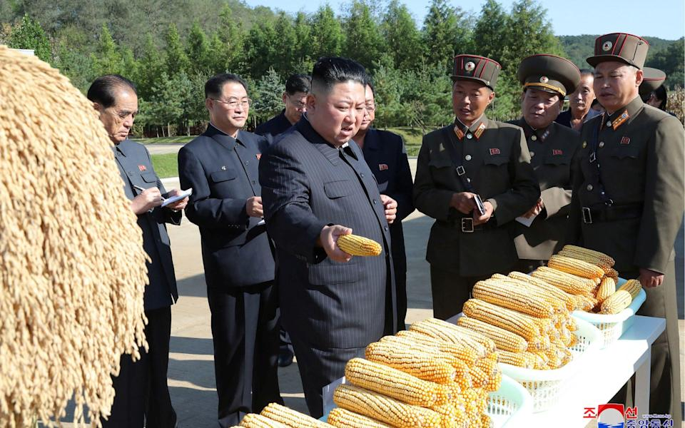North Korea could soon be facing a famine. - Reuters
