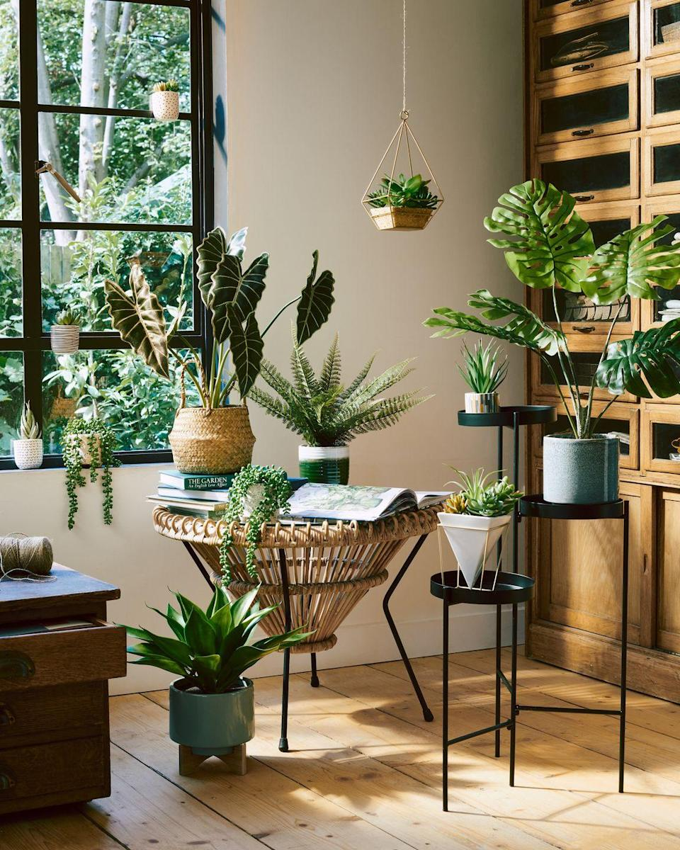 <p>Spruce up your living space with Faux Floral, the final trend from Sainsbury's. Perfect for the not-so-green-fingered, these plants look as good as the real thing. </p><p>Sian Butler, Senior Buyer, explains: 'Well suited for busy modern lifestyles, hassle-free faux florals continue to be an essential home trend. Large-leaf statement botanicals effortlessly add structure to a room, whilst floral arrangements, tumbling green vines and hanging succulents inject colour and life to interiors.' <br></p>