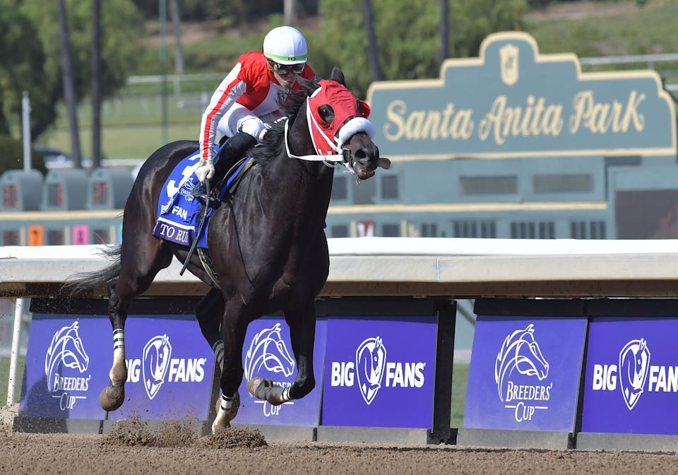 Though 56 horses have died at Santa Anita since July 2018, an investigation by the Los Angeles County district attorney's office found no criminal wrongdoing.