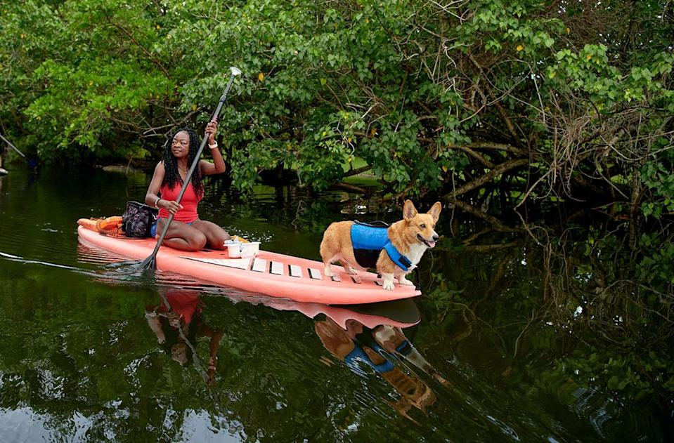"""<a href=""""http://airbnb.pvxt.net/b9QPb"""" rel=""""nofollow noopener"""" target=""""_blank"""" data-ylk=""""slk:Pup Paddle Tour in Miami, Florida"""" class=""""link rapid-noclick-resp""""><h3>Pup Paddle Tour in Miami, Florida <br></h3></a><br><strong>What you're in for: </strong>If you want to take your water sporting activities to the next level, consider paddleboarding down the Las Olas canals in Miami with a corgi in tow. In addition to having a furry friend on board, you may even spot a manatee in the water for double the fun. <br><br><strong>Cost per person:</strong> $38<br><br><strong>Duration:</strong> 1.5 hours<br><br><strong>Group size: </strong>Up to 7 people<br><strong><br></strong><span class=""""copyright"""">Photo: Courtesy of Airbnb</span>"""