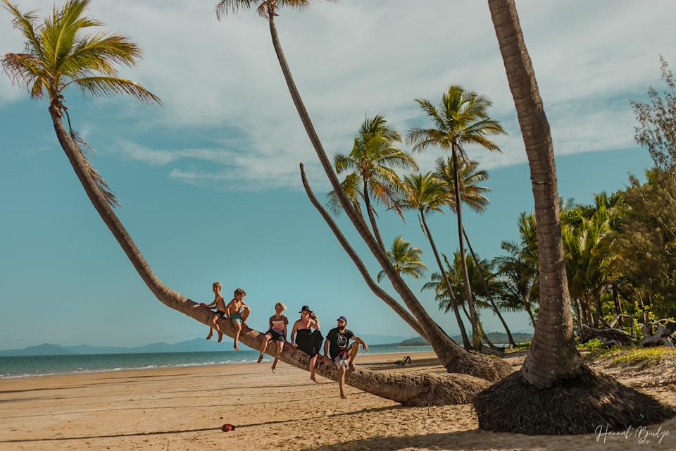 Image of Hannah Budge and family sitting on a palm tree at a beach