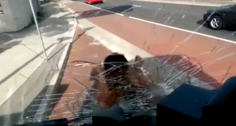 During the frenzied assault, several commuters can be heard remarking that the man appears to be bleeding from the repeated blows towards the glass. Photo: Reddit
