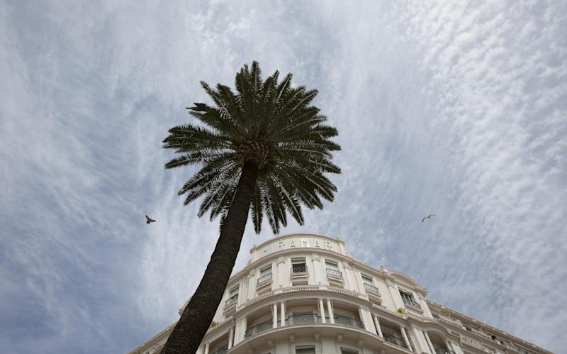 two birds fly near a palm tree at the Miramar Hotel on the Croisette prior to the opening of the Cannes Film Festival in Cannes, France on Monday, May 12, 2014. The Festival will run from May 14-25th. (AP Photo/Virginia Mayo)