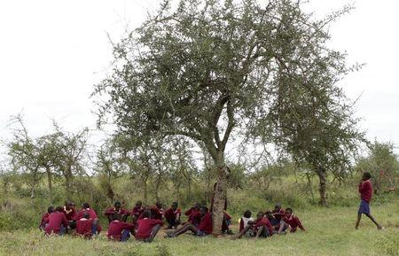 Boys from Nalepo Primary School sit under a tree as they have their lunch in the semi-arid Kajiado County