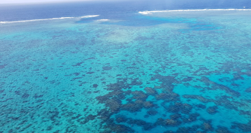 Great Barrier reef arial views helicopter
