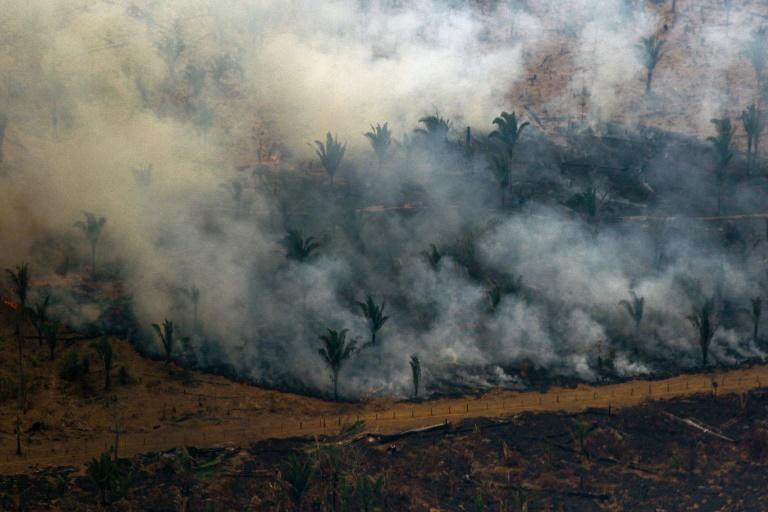 Bolsonaro's reputation among other nations has been tarnished by his poor record on containing deforestation and wildfires in the Amazon rainforest