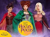 """<p>More than two decades after the Halloween classic <em>Hocus Pocus</em> premiered, people can finally channel the Sanderson sisters for Halloween, thanks to an <a href=""""https://www.countryliving.com/shopping/news/g4786/hocus-pocus-costume-collection/"""" rel=""""nofollow noopener"""" target=""""_blank"""" data-ylk=""""slk:exclusive collection"""" class=""""link rapid-noclick-resp"""">exclusive collection</a> of <a href=""""https://go.redirectingat.com?id=74968X1596630&url=https%3A%2F%2Fwww.spirithalloween.com%2Fthumbnail%2Ftv-movies-gaming%2Fmovies%2Fhocus-pocus%2Fpc%2F1382%2Fc%2F3810%2F4229.uts&sref=https%3A%2F%2Fwww.countryliving.com%2Fentertaining%2Fg460%2Fvintage-halloween%2F"""" rel=""""nofollow noopener"""" target=""""_blank"""" data-ylk=""""slk:Hocus Pocus costumes and decor"""" class=""""link rapid-noclick-resp""""><em>Hocus Pocus</em> costumes and decor</a><span class=""""redactor-invisible-space""""> from</span> <a href=""""https://go.redirectingat.com?id=74968X1596630&url=https%3A%2F%2Fwww.spirithalloween.com%2Fhome.jsp&sref=https%3A%2F%2Fwww.countryliving.com%2Fentertaining%2Fg460%2Fvintage-halloween%2F"""" rel=""""nofollow noopener"""" target=""""_blank"""" data-ylk=""""slk:Spirit Halloween"""" class=""""link rapid-noclick-resp"""">Spirit Halloween</a>. However, fans are less enthused to learn that <em>Hocus Pocus</em> is officially getting a reboot—but <a href=""""https://www.countryliving.com/life/entertainment/a45036/hocus-pocus-sequel/"""" rel=""""nofollow noopener"""" target=""""_blank"""" data-ylk=""""slk:likely without the original cast"""" class=""""link rapid-noclick-resp"""">likely without the original cast</a>.</p>"""