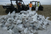 FILE - In this Thursday, Oct. 7, 2021, file photo, bags of crude oil collected by workers stack on a beach after an oil spill in Newport Beach, Calif. The amount of crude oil spilled in an offshore pipeline leak in Southern California is believed to be close to about 25,000 gallons, a Coast Guard official said Thursday Oct. 14, 2021. (AP Photo/Ringo H.W. Chiu, File)