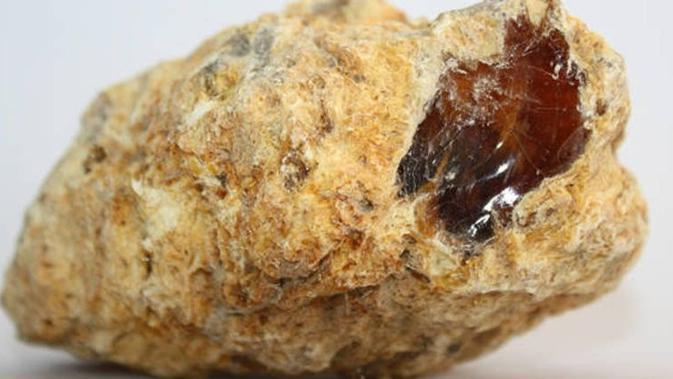 Ambergris (sumber: All That's Interesting)