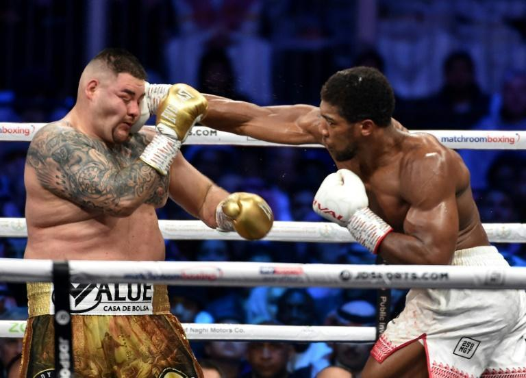 Anthony Joshua (right)reclaimed his IBF, WBA and WBO titles by avenging a shock defeat against Andy Ruiz Jr (left)