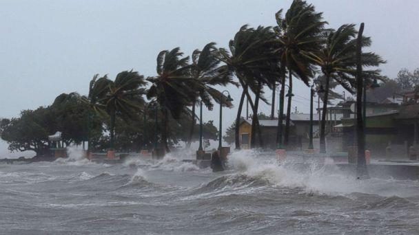 PHOTO: Palm trees buckle under winds and rain as Hurricane Irma slammed across islands in the northern Caribbean on Wednesday, in Fajardo, Puerto Rico Sept. 6, 2017. (Alvin Baez/Reuters)