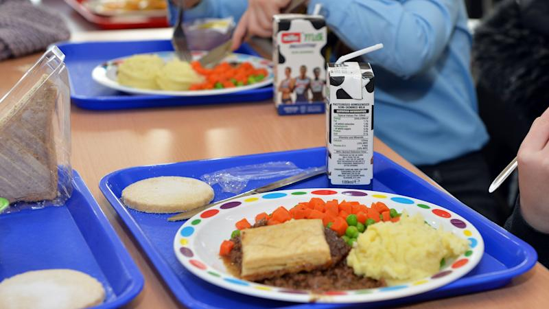Three in 10 school-aged children registered for free school meals – survey