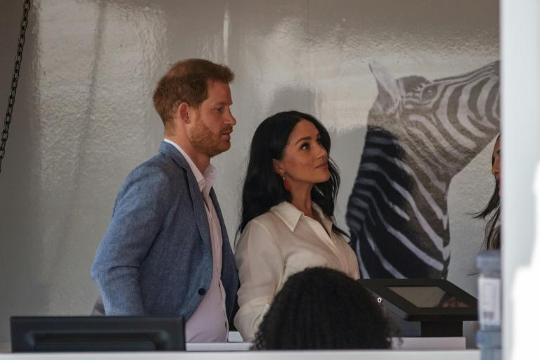 Helping hand: Prince Harry and his wife Meghan, the Duchess of Sussex, at a youth employment hub in Johannesburg