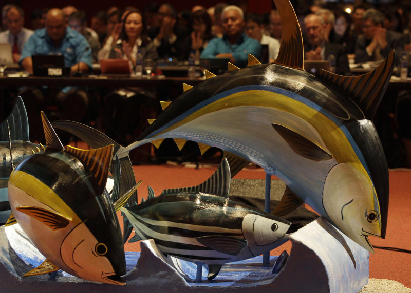 Tuna replicas are on display during the opening of the 9th regular session of the Western and Central Pacific Fisheries Commission in suburban Manila, Philippines on Sunday Dec. 2, 2012. Several governments and environmentalists have raised an alarm over destructive fishing methods and overfishing that were threatening the Pacific Ocean's bigeye tuna, the fish popular among sushi lovers the world over. (AP Photo/Aaron Favila)