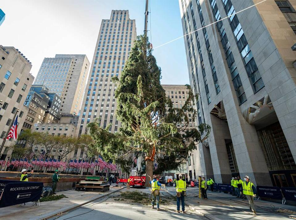 Rockefeller Center Christmas Tree, 2020, 30 Rock