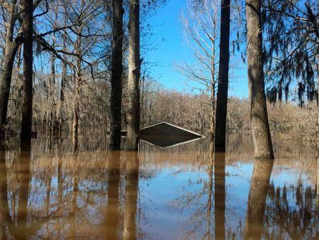 The top of the boathouse is all that shows in the flooded area of the Lake Bistineau community in Webster Parish Louisiana March 14, 2016. REUTERS/Therese Apel