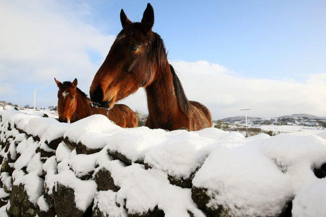Cold temperatures are likely to remain well into next week (Brian Lawless/PA)