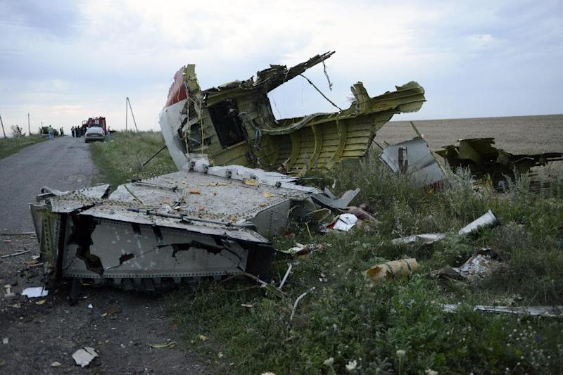 The wreckage of the Malaysian airliner carrying 298 people from Amsterdam to Kuala Lumpur after it crashed, near the town of Shaktarsk in rebel-held east Ukraine, on July 17, 2014 (AFP Photo/Alexander Khudoteply)