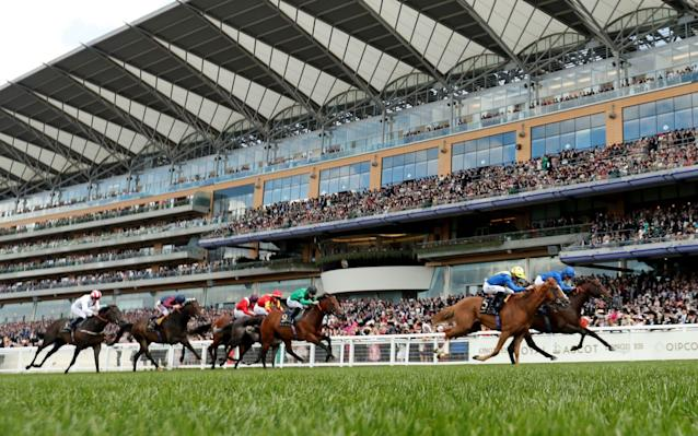Horse Racing - Royal Ascot - Ascot Racecourse, Ascot, Britain - June 22, 2019 Blue Point ridden by James Doyle wins the 4.20 Diamond Jubilee Stakes Action Images via Reuters/Matthew Childs/File Photo - Action Images via Reuters