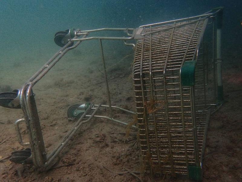 A discarded shopping trolley underwater.