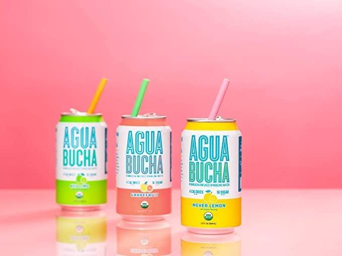 <p>With only four calories, the <span>Agua Bucha</span> ($29) is a trendy kombucha sparkling water that is light and rich with vitamins.</p>