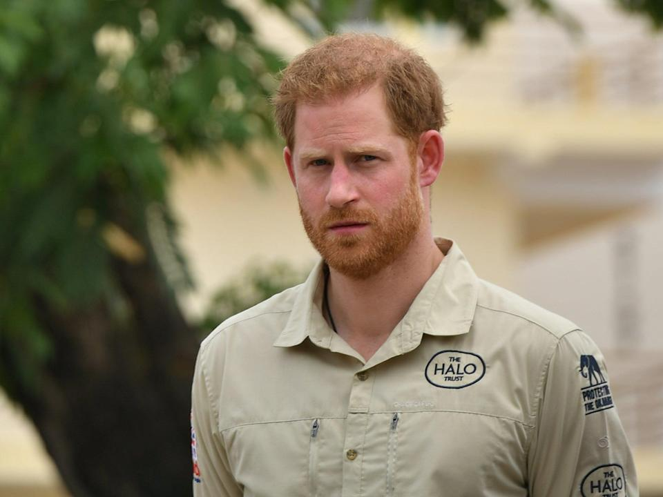 <p>Prince Harry in Angola</p> (PA)
